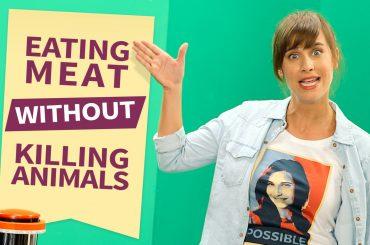 SuperMeat – ізраїльський стартап для культивування м'яса із клітин тварини