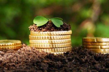 Как быть с землей и почему ее продавать нельзя