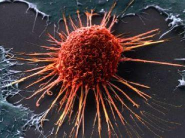 В Израиле разрешили лекарство от 15 видов рака