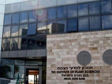 Израильский институт стал лауреатом премии ЮНЕСКО, но получить ее отказывается