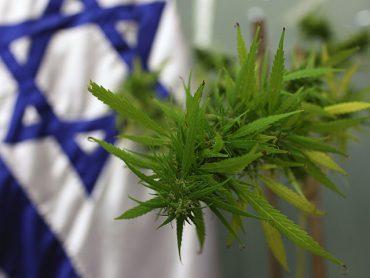 Израильская марихуана завоевала четыре награды Canadian Cannabis Awards