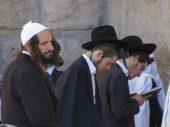 В Израиле будут обучать кибертехнологиям ортодоксальных иудеев