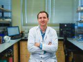 """В """"Технионе"""" разработали новый метод лечения онкологии – таблетку с золотой оболочкой"""