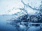 Израильский стартап будет помогать американскому штату в очистке водоемов